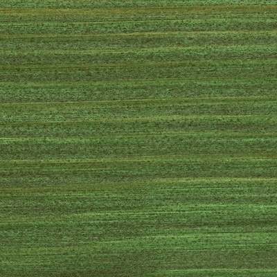 729 Темно-зеленое